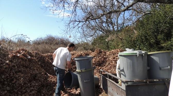 compost des feuilles de chênes