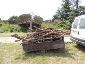 bois mort permettant de reconstituer le milieu naturel