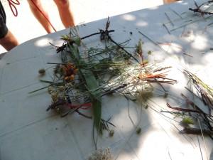 tissage nature au domaine de briange