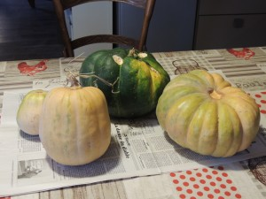 courges Briange