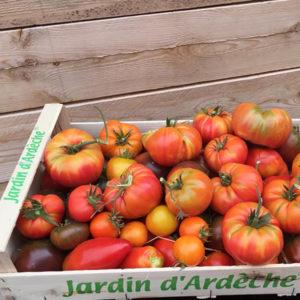 Idée cadeau : panier de légumes bio des Jardins d'Armel