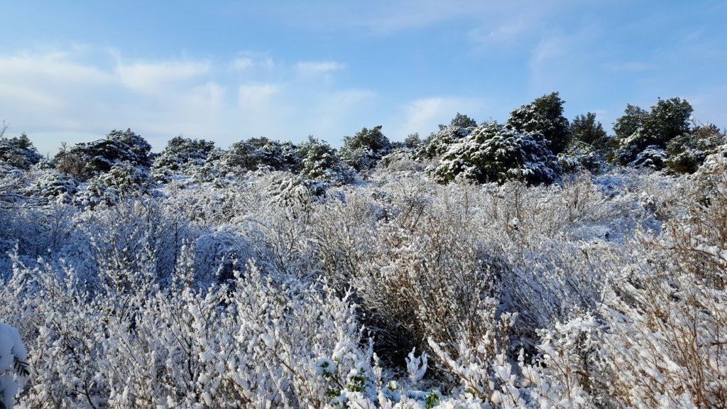 neige à briange